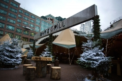 Broadgate Winter Forest (52)_preview