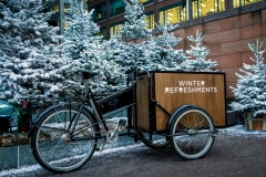 Broadgate Winter Forest (104)_preview