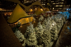 Broadgate Winter Forest (155)_preview