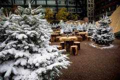 Broadgate Winter Forest (34)_preview
